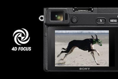 Новое измерение фото- и видеосъемки